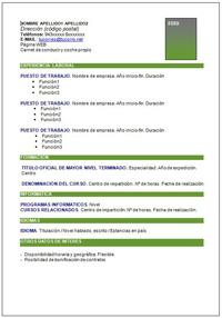 Curriculum Vitae Orientacion